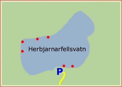 Herbjarnarfellsvatn - Hnit: 64° 4,236'N, 19° 15,841'W