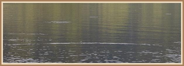Þurrflugufæri