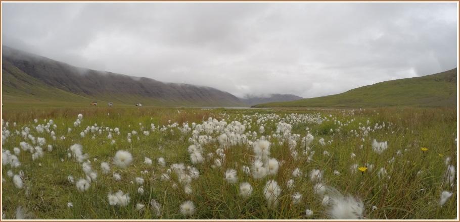 Síðsumar í Hraunsfirði
