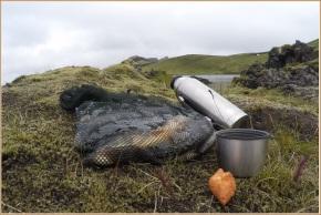 Kaffi, kleina og fiskur við Frostastaðavatn