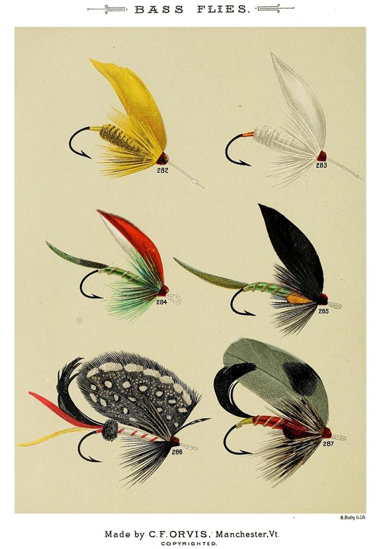 282. Yellow Miller – 283. White Miller – 284. W.H.Hammet – 285. Triumph – 286. Tipperlinn – 287. W.T.