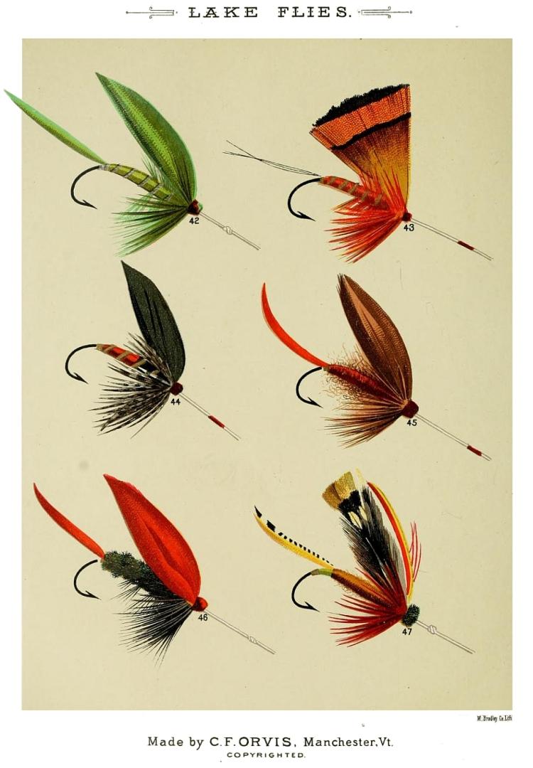42. Green Weaver – 43. Golden Pheasant – 44. Gray Duke – 45. Fiery Brown – 46. Grackle – 47. Grasshopper