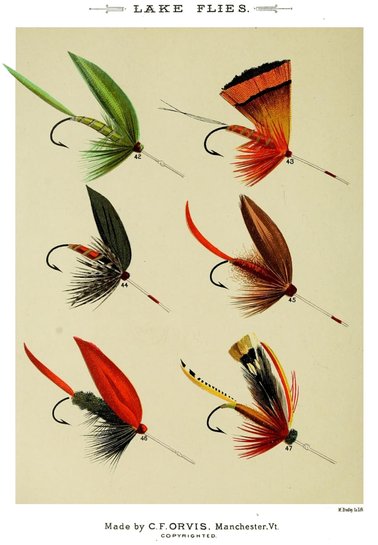 42. Green Weaver – 43. Golden Pheasant – 44. Gray Duke – 45. Fiery Brown – 46. Grackle – 47. Grasshopper