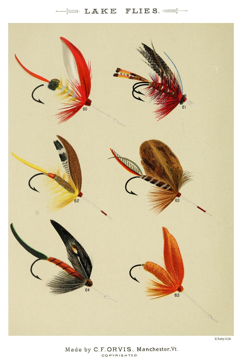 60. Parmacheene Belle – 61. Nicholson – 62. Nameless – 63. Cunningham – 64. Lord Baltimore – 65. Orange Miller