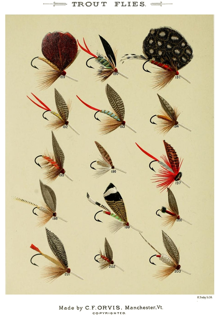 189. Pheasant – 190. Puffer – 191. Parker – 192. Professor – 193. Blue Professor – 194. Poor Man's Fly – 195. Queen of the Water – 196. Quaker – 197. Quack Doctor – 198. Red Fox – 199. Romeyn – 200. Red Ant – 201. Red Head – 202. Red Ash – 203. Reuben Wood