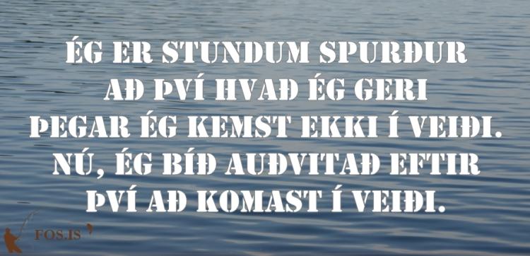 fos_tilv_156