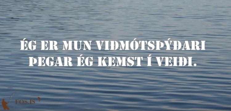 fos_tilv_162