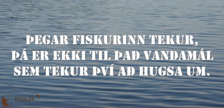 fos_tilv_173